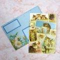 【パンチ・スタジオ】猫のグリーティング・カード(ブランク・カード)