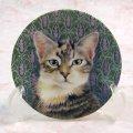 【レズリー・アン・アイボリー】猫のミニ絵皿 Sheena : Vintage